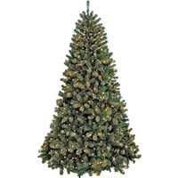 TREE NOB FIR SHEAR PRELIT 6FT