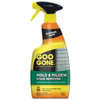 REMOVER STAIN MLD&MILDEW 24OZ