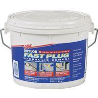 Drylok Fast Plug 00917 Hydraulic Cement