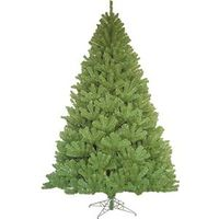 7'0 NOBLE FIR TREE WIDE PROFIL