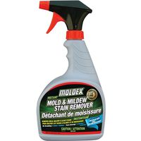 STAIN REMOVER INSTANT 32OZ