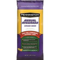 Pennington 100085727 Fine Texture Annual Rye Grass Seed