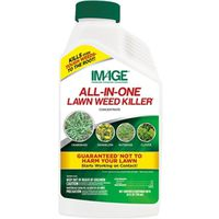 KILLER WEED ALL-N-1 CONC 24OZ
