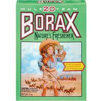 20 Mule Team Borax 722624 Detergent Booster