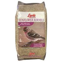 Lyric 26-47284 Sunflower Kernel