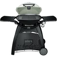Weber-Stephen Q 3200 2-Burner Gas Grill