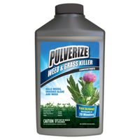 KILLER WEED&GRASS CONC 32OZ