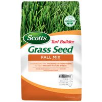 SEED GRASS FALL MX JUN-NOV 3LB
