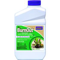WEED/GRASS KILLER CONC QUART