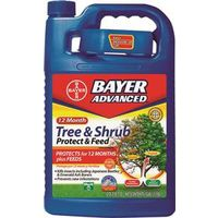 TREE/SHRUB FEED CONC 1GALLON
