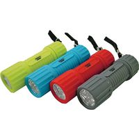 Powerzone FT-ORG18 Compact Flashlight