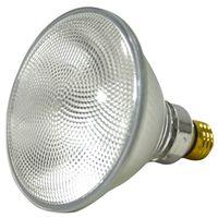 Capsylite 16739 Halogen Lamp