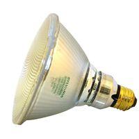 Capsylite 16731 Tungsten Halogen Lamp