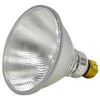 Capsylite 16737 Tungsten Halogen Lamp