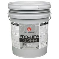PAINT INTR FLAT PRO WHITE 5GAL