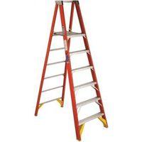 Werner P6206 Platform Ladder