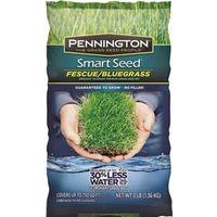 Pennington Seed 100086847 Smart Seed Grass Seed