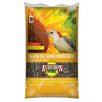 FOOD BRD BLK OIL SUNFLWER 10LB
