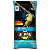 FOOD BIRD NYJER SEED 10 LB