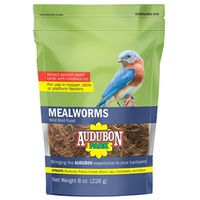 FOOD BIRD MEALWORM 8OZ