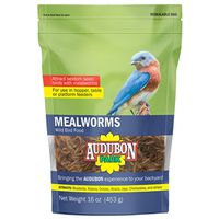 FOOD BIRD MEALWORM 16OZ