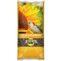 FOOD BRD BLK OIL SUNFLOWER 5LB