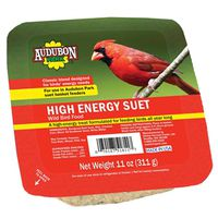 FOOD BRD SUET HI-ENRGY 11OZ
