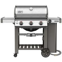 GRILL NATURAL GAS SS E-310