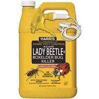 Harris HBXA-128 Beetle Killer