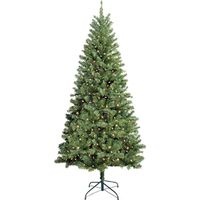 TREE DOUGLAS 7FT CLEAR CUL
