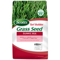 SEED GRASS SUNNY MIX 3LB