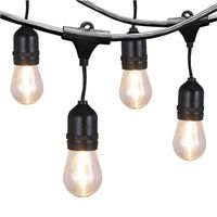 LIGHTS STRING LED OUTDOOR 24FT
