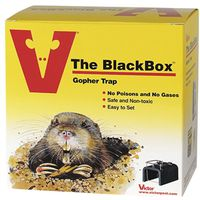 Victor The Blackbox 0625 Choker Loop Style Gopher Trap