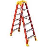 Werner T6206 Twin Ladder