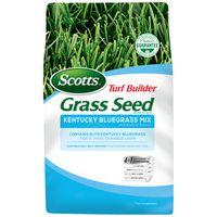 SEED GRASS KENTUCKY BLU MX 3LB