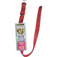Aspen Pet 15356 Dog Collars