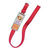 Aspen Pet 21406 Dog Collars