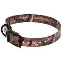 Aspen Pet 10846 Dog Collars