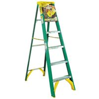 Werner 5906 Single Sided Step Ladder