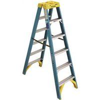 Werner T6006 Twin Ladder