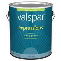 Expressions 17141 Latex Paint
