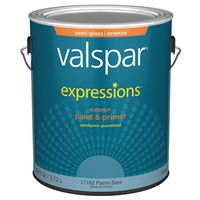 Expressions 17162 Latex Paint