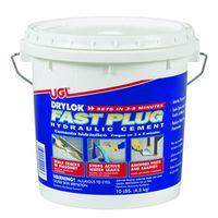 Drylok Fast Plug 00924 Hydraulic Cement