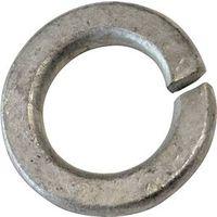 Porteous 00350-2800-404 Regular Split Lock Washer