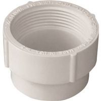 Genova Products 71614 PVC-DWV Cleanout Adapter