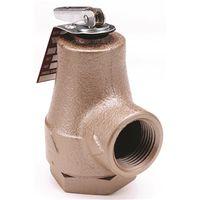Watts 374A Boiler Pressure Relief Valve