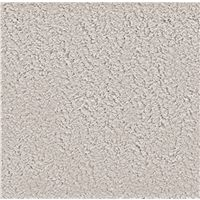 Cheyenne Professional 156 Acoustical Square Edge Ceiling Panel