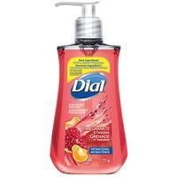 Dial 1717284 Anti-Bacterial Hand Soap