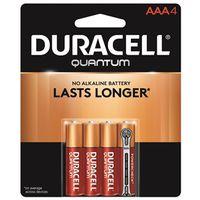 Quantum 66249 Alkaline Battery