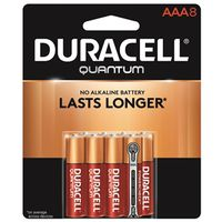 Quantum 66253 Alkaline Battery
